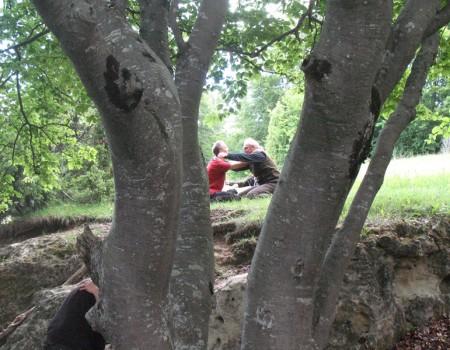 A WILD BREEZE OF STILLNESS für Naturkinder von 0 – 99 Jahren- Ein innerer und äußerer Tanz in der Natur 21. – 26. Aug 2018 im Donautal/ Schwäb. Alb