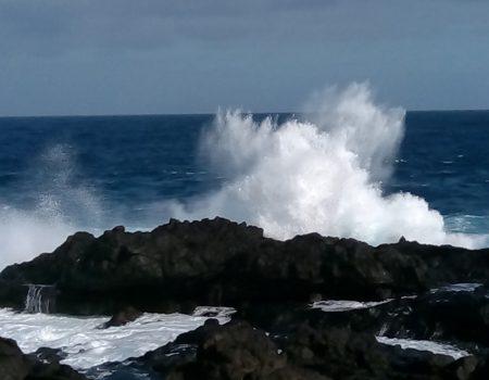 Die WELLE des Lebens reiten – Tanz-Meditation einmal monatlich in Playa Paraíso/ Tenerife